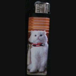 BRIQUET : CHAT (USAGÉ)