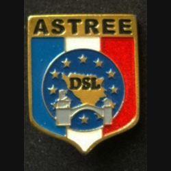 TRAIN : insigne du détachement de soutien logistique (DSL) de l'opération ASTREE des forces européennes (EUFOR) de fabrication locale peinte