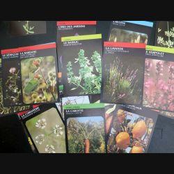 30 Cartes sur les plantes et les fleurs
